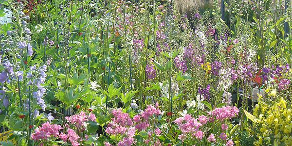 Kent Garden Show, Detling